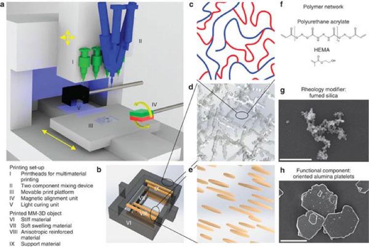 محققان موفق به پرینت سه بعدی سازه های مرکب در فضا پنج بعدی شدند