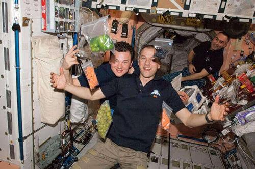 فضانوردی