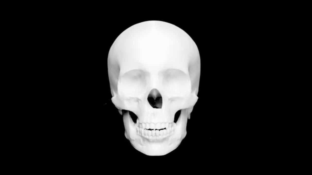 معرفی و دانلود 10 مدل سه بعدی رایگان جمجمه برای پرینتر سه بعدی